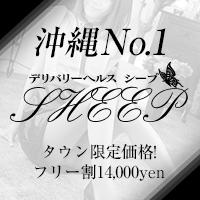 sheep -沖縄-